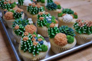 I want these cupcakes