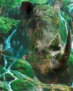 Rhinoceros Falls